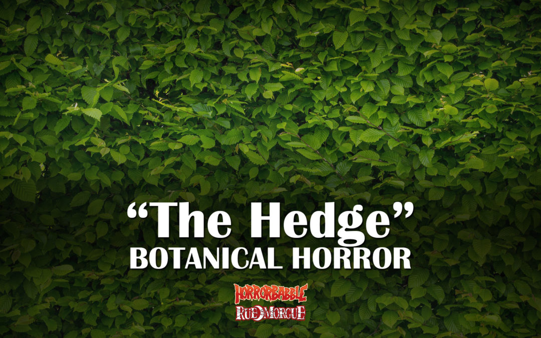 """HorrorBabble Concludes Its Botanical Horror Series With """"The Hedge"""""""